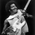 Purchase Albert Collins MP3