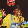 Purchase Cobra MP3