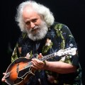 Purchase David Grisman MP3