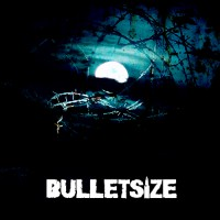 Bulletsize