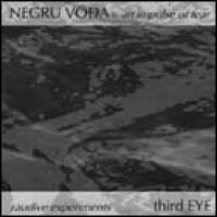 Negru Voda & Third Eye