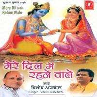 Vinod Agarwal