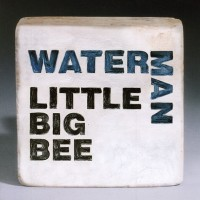 Little Big Bee