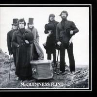 McGuinness Flint