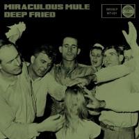 Miraculous Mule