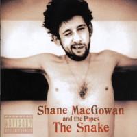 Shane MacGowan