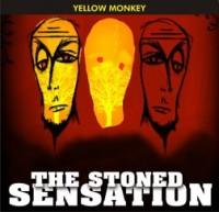 The Stoned Sensation