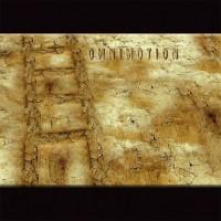 Omnimotion