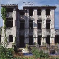 Amoeba Split