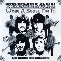 The Tremeloes