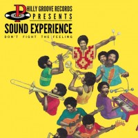 Sound Experience