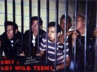 Lil Luis Y Los Wild Teens