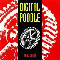 Digital Poodle