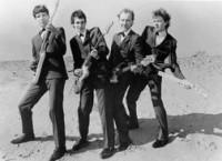 The Raybeats