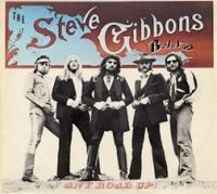 The Steve Gibbons Band