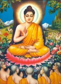 Buddhattitude
