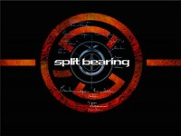 Split Bearing
