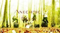 Anechoic Delay