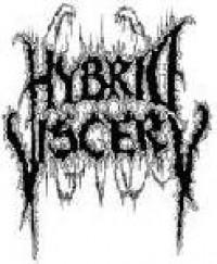 Hybrid Viscery