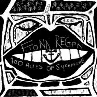 Fionn Regan