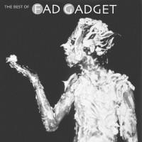 Fad Gadget