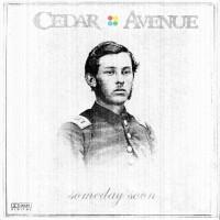 Cedar Avenue