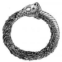 Hoopsnake
