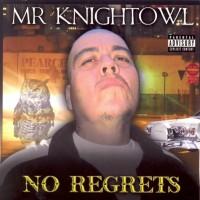 Mr. Knightowl