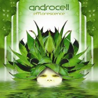 Androcell