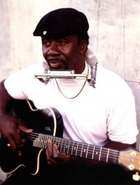 Terry Harmonica Bean