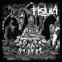 Fistula