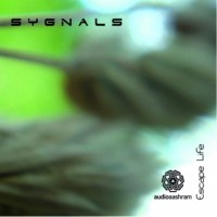 Sygnals