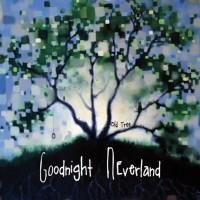 Goodnight Neverland