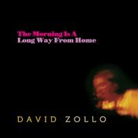 David Zollo