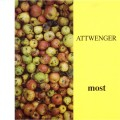 Purchase Attwenger MP3