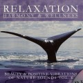 Purchase Relaxation: Harmony & Wellness MP3