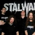 Purchase Stalwart MP3