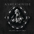 Purchase Ashes Divide MP3