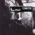 Purchase Cenotype MP3