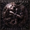 Purchase Biomechanical MP3