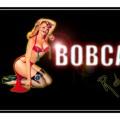 Purchase Bobcat MP3