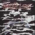 Purchase The Phantom Limbs MP3