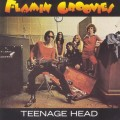 Purchase The Flamin' Groovies MP3
