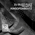 Purchase DJ Buzz Fuzz MP3