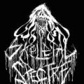 Purchase Skeletal Spectre MP3