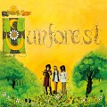 Purchase Sunforest MP3