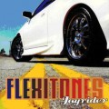 Purchase Flexitones MP3