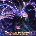 Purchase Space Monkey MP3