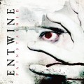 Purchase Entwine MP3