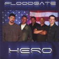 Purchase Floodgate MP3